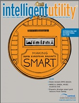 intelliegent utility jan feb 2013